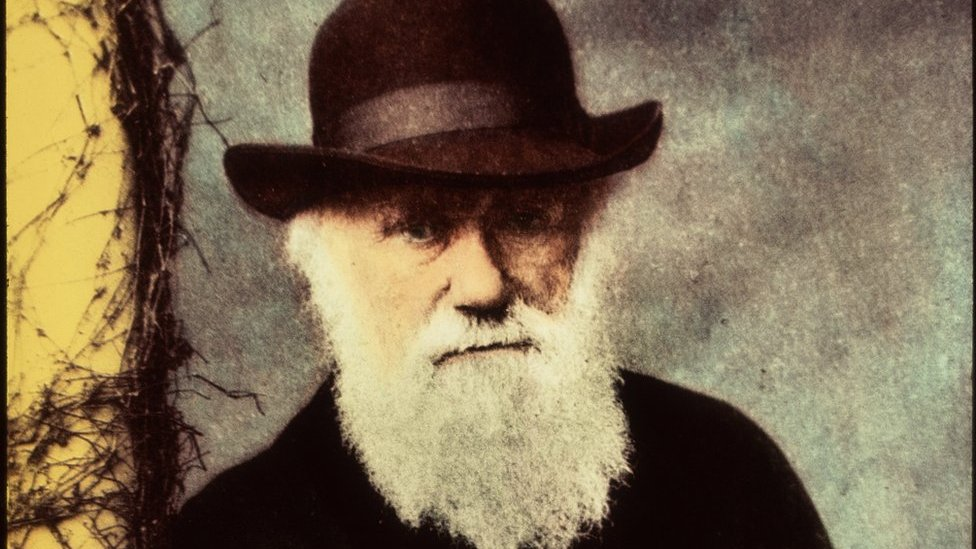 Çeviride Darwin – Çeviri Tarihi – Çevirinin Geçmişi – Çeviri Yaptırma – Tercüme Yaptırma – Tercüme Yaptırma Fiyatları