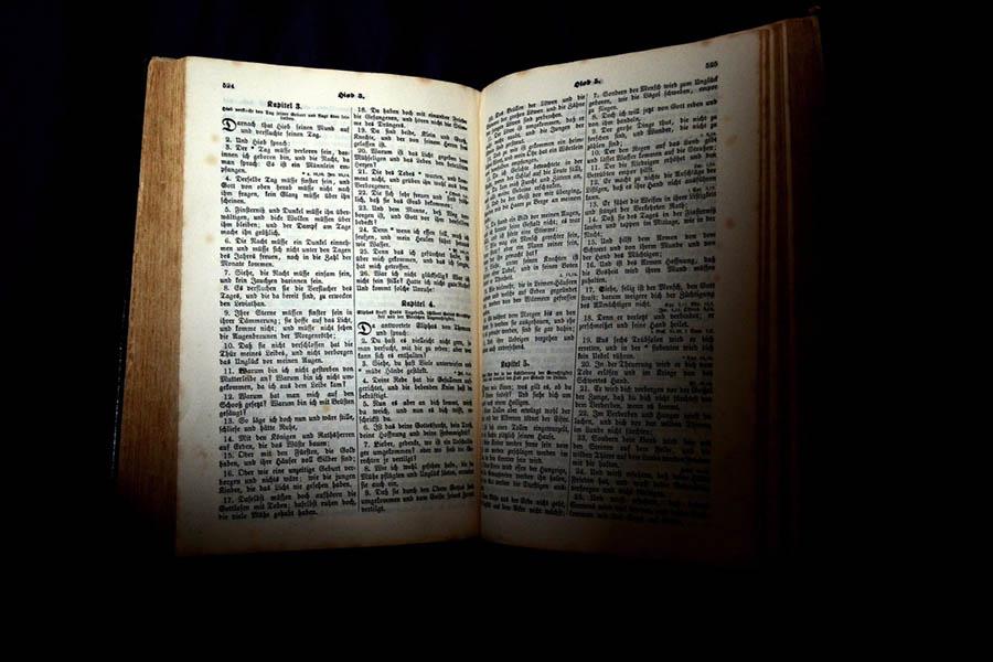 Çeviri, Dil ve Varlık – Kültürel Çeviri – Kültür Nasıl Aktarılır? – Çeviri Kültürü Korur Mu? – Tercüme Yaptırma – Tercüme Yaptırma Fiyatları